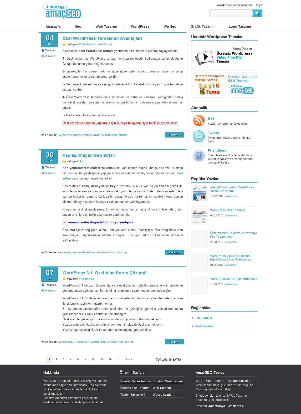 Wordpress Seo Teması Anasayfa
