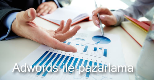 google-adwords-danismanligi