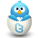 twitter sosyal ağlar