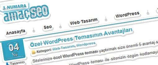 Amaç Dizayn Wordpress Seo Teması