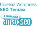 Wordpress SEO Teması